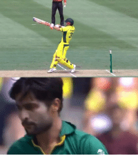 Memes, 🤖, and Warner: As AUS vs PAK, 4th ODI: AUS - 54/0 (7) | David Warner - 39(19) , Usman Khawaja - 17(23)
