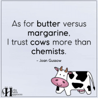 Learn More:  Science Has Spoken: Grass-fed Butter Eaters Have Fewer Heart Attacks: ==> http://www.herbs-info.com/blog/science-has-spoken-grass-fed-butter-eaters-have-fewer-heart-attacks/  6 Types Of Cooking Oil To NEVER Eat: ==> http://www.herbs-info.com/blog/6-types-of-cooking-oil-to-never-eat/  How Is Canola Oil Made? (Scary): ==> http://www.herbs-info.com/blog/how-is-canola-oil-made-scary/  Why Is Everyone Suddenly Putting Butter In Their Coffee? ==> http://www.herbs-info.com/blog/why-is-everyone-suddenly-putting-butter-in-their-coffee/: As for butter versus  margarine,  I trust cows more than  chemists.  Joan Gussow  erbs  ealth  appiness Learn More:  Science Has Spoken: Grass-fed Butter Eaters Have Fewer Heart Attacks: ==> http://www.herbs-info.com/blog/science-has-spoken-grass-fed-butter-eaters-have-fewer-heart-attacks/  6 Types Of Cooking Oil To NEVER Eat: ==> http://www.herbs-info.com/blog/6-types-of-cooking-oil-to-never-eat/  How Is Canola Oil Made? (Scary): ==> http://www.herbs-info.com/blog/how-is-canola-oil-made-scary/  Why Is Everyone Suddenly Putting Butter In Their Coffee? ==> http://www.herbs-info.com/blog/why-is-everyone-suddenly-putting-butter-in-their-coffee/
