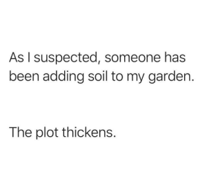 A real mystery: As I suspected, someone has  been adding soil to my garden.  The plot thickens. A real mystery