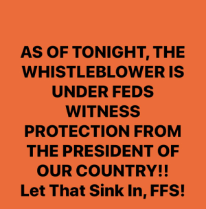witness protection: AS OF TONIGHT, THE  WHISTLEBLOWER IS  UNDER FEDS  WITNESS  PROTECTION FROM  THE PRESIDENT OF  OUR COUNTRY!!  Let That Sink In, FFS!