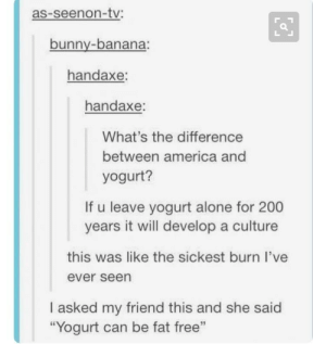 "'Scuse me while I go get some aloe vera: as-seenon-tv:  bunny-banana:  handaxe:  handaxe:  What's the difference  between america and  yogurt?  If u leave yogurt alone for 200  years it will develop a culture  this was like the sickest burn I've  ever seen  I asked my friend this and she said  ""Yogurt can be fat free""  95 'Scuse me while I go get some aloe vera"