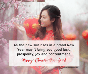 Happy Chinese New Year Quotes, Wishes, Images, Greetings & Cards #sayingimages #happychinesenewyear #chinesenewyear #chinesenewyearquotes #chinesenewyearwishes #chinesenewyeargreetings #chinesenewyearcards: As the new sun rises in a brand New  Year may it bring you good luck,  prosperity, joy and contentment.  aptp  Sayinglmages.com Happy Chinese New Year Quotes, Wishes, Images, Greetings & Cards #sayingimages #happychinesenewyear #chinesenewyear #chinesenewyearquotes #chinesenewyearwishes #chinesenewyeargreetings #chinesenewyearcards