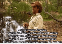 Crocs, Memes, and Plies: As their name implies  saltwater crocs are found in salt water  butthey also foundin:treshwater,  which is not plies.  -  What their name im  Itjust goes to show they're not t An animal in Australia being dangerous? I'm shocked..