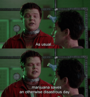 Disastrous: As usual...   ..marijuana saves  an otherwise disastrous day.