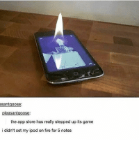 Fire, Memes, and App Store: asantgoose  pleasantgoose:  the app store has really stepped up its game  i didn't set my ipod on fire for 5 notes me, trying to get attention