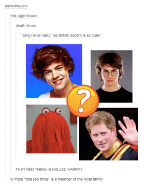 "Cute, Family, and Love: ascoutinglevi:  this-ugly-flower:  death-limes:  omg i love Harry!his British accent is so cute!""  THAT RED THING IS CALLED HARRY?  oi mate ""that red thing"" is a member of the royal family Harry and his British accent"