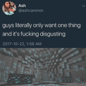 minecraft is always superior: Ash  @ashcammm  guys literally only want one thing  and it's fucking disgusting  2017-10-22, 1:56 AM minecraft is always superior