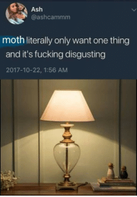 Moth meme dump: Ash  @ashcammm  moth literally only want one thing  and it's fucking disgusting  2017-10-22, 1:56 AM Moth meme dump