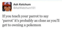 How to have a Pokémon in real life.: Ash Ketchum  @AshKetchum 151  If you teach your parrot to say  parrot' it's probably as close as you'll  get to owning a pokemon How to have a Pokémon in real life.