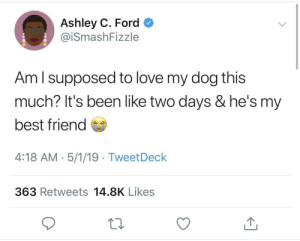 Best Friend, Love, and Best: Ashley C. Ford  @iSmashFizzle  Am l supposed to love my dog this  much? It's been like two days & he's my  best friend  4:18 AM-5/1/19 TweetDeck  363 Retweets 14.8K Likes Puppy love