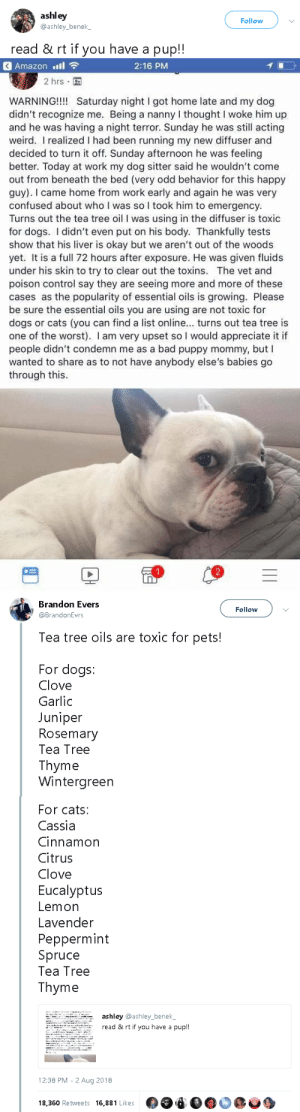 gahdamnpunk:  PLUS!!: Toxic for rabbits: Anise, Clove, Oregano, Tea Tree, Wintergreen Safe for rabbits:  Lavender, lemon, orange, fennel,  eucalyptus and peppermint, all should be diluted with water!   : ashley  Follow  ashley bene  read & rt if you have a pup!!   Amazon '11令  2:16 PM  2 hrs  WARNING! Saturday night I got home late and my dog  didn't recognize me. Being a nanny I thought I woke him up  and he was having a night terror. Sunday he was still acting  weird. I realized I had been running my new diffuser and  decided to turn it off. Sunday afternoon he was feeling  better. Today at work my dog sitter said he wouldn't come  out from beneath the bed (very odd behavior for this happy  guy). I came home from work early and again he was very  confused about who I was so I took him to emergency.  Turns out the tea tree oil I was using in the diffuser is toxic  for dogs. I didn't even put on his body. Thankfully tests  show that his liver is okay but we aren't out of the woods  yet. It is a full 72 hours after exposure. He was given fluids  under his skin to try to clear out the toxins. The vet and  poison control say they are seeing more and more of these  cases as the popularity of essential oils is growing. Please  be sure the essential oils you are using are not toxic for  dogs or cats (you can find a list online... turns out tea tree is  one of the worst). I am very upset so I would appreciate it if  people didn't condemn me as a bad puppy mommy, but I  wanted to share as to not have anybody else's babies go  through this.   Brandon Evers  @BrandonEvrs  Follow  Tea tree oils are toxic for pets!  For dogs:  Clove  Garlic  Juniper  Rosemary  Tea Tree  Thyme  Wintergreen   For cats:  Cassia  Cinnamon  Citrus  Clove  Eucalyptus  Lemon  Lavender  Peppermint  Spruce  Tea Tree  Thyme  ashley @ashley_benel  read & rt if you have a pup!!  12:38 PM-2 Aug 2018  18,360 Retweets 16,881 Likes gahdamnpunk:  PLUS!!: Toxic for rabbits: Anise, Clove, Oregano, Tea Tree, Wintergreen Safe for rabbits:  Lavender, lemon, orange, fennel,  eucalyptus and peppermint, all should be diluted with water!