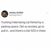 Fucking, Memes, and Fiat: Ashley Griffith  @AshgriffoTV  I fucking Hate being cat fished by a  parking space. Get so excited, go to  pull in.. and there's a fiat 500 in there Y'all know this feeling.. 💀 https://t.co/POfOLFfPb9