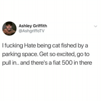 Fucking, Memes, and Wshh: Ashley Griffith  @AshgriffoTV  I fucking Hate being cat fished by a  parking space. Get so excited, go to  pull in.. and there's a fiat 500 in there Y'all know this feeling.. 💀 WSHH