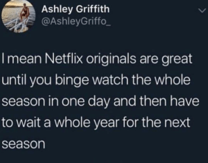 Or they cancel it...: Ashley Griffith  @AshleyGriffo  I mean Netflix originals are great  until you binge watch the whole  season in one day and then have  to wait a whole year for the next  season Or they cancel it...