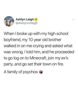meirl: Ashlyn Leigh  @Ashlynnnleigh  When I broke up with my high school  boyfriend, my 10 year old brother  walked in on me crying and asked what  was wrong. I told him, and he proceeded  to go log on to Minecraft, join my ex's  party.and go set their town on fire.  A family of psychos meirl