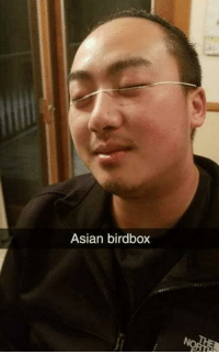 Asian, Control, and This: Asian birdbox guys, this is getting out of control