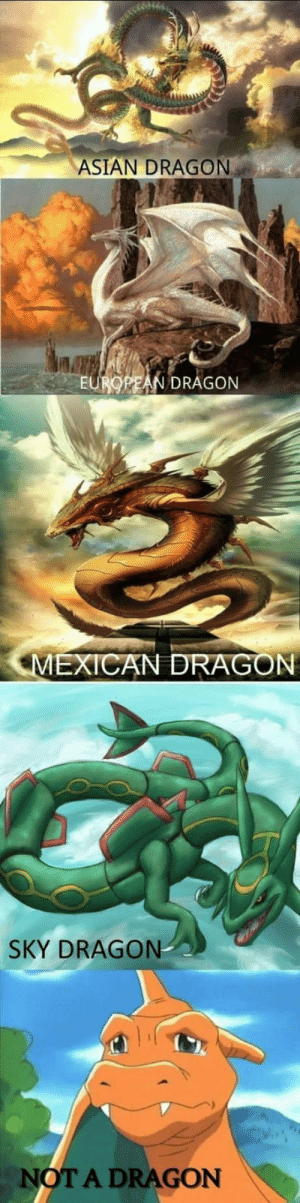 Asian, Debate, and Dragon: ASIAN DRAGON  EUROREAN DRAGON  SKY DRAGON  OT A DRAGON Settling the Dragon Debate once and for all.