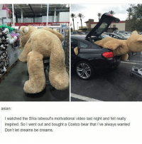 Asian, Costco, and Friends: asian  I watched the Shia labeoufs motivational video last night and felt really  inspired. SoI went out and bought a Costco bear that I've aways wanted  Don't let dreams be dreams Tag one of your friends an follow us for more tumblr and textposts