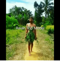 Asian, Indonesian (Language), and Model: Asian Rop Model