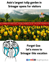Vacation, Indianpeoplefacebook, and Move: Asia's largest tulip garden in  Srinagar opens for visitors  LAUGHING  (0)  Forget uoa  let's move to  Srinagar this vacation  flaughingcolours
