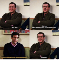 Memes, Ted, and Yeti: Ask me  if the Abominable Snowman called.  Hey, Ted.  Has the Abominable Snowman called?  Not yeti. #HIMYM https://t.co/iYASswPrsq