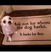Memes, 🤖, and Ask: Ask not for whom  s the dog barks.  It barks for thee. Bork badsciencejokes
