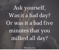 Life is incredibly short. Don't let one small thing ruin a whole day.: Ask yourself  Was it a bad day?  Or was it a bad five  minutes that you  milked all day?  Dr Laura Conn Life is incredibly short. Don't let one small thing ruin a whole day.