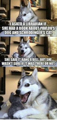 Science humor :3 ~ M4lic3: ASKED A LIBRARIAN IF  SHE HAD ABOOK ABOUT PAVLOV'S  DOGANDSCHRUDINGER SCAT  SHE SAIDITRANG ABELL BUTSHE  WASNTSUREIRITWASTHERE OR NOT Science humor :3 ~ M4lic3