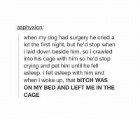 Bitch, Crying, and Friends: asphyxion:  when my dog had surgery he cried a  lot the first night, but he'd stop when  i laid down beside him, so i crawled  into his cage with him so he'd stop  crying and pet him until he fell  asleep. i fell asleep with him and  when i woke up, that bITCH WAS  ON MY BED AND LEFT ME IN THE  CAGE best friends forever https://t.co/bAI0QvseYB