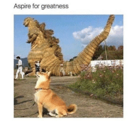 "<p>Keep dreaming pupper! via /r/wholesomememes <a href=""http://ift.tt/2uAUU5F"">http://ift.tt/2uAUU5F</a></p>: Aspire for greatness <p>Keep dreaming pupper! via /r/wholesomememes <a href=""http://ift.tt/2uAUU5F"">http://ift.tt/2uAUU5F</a></p>"