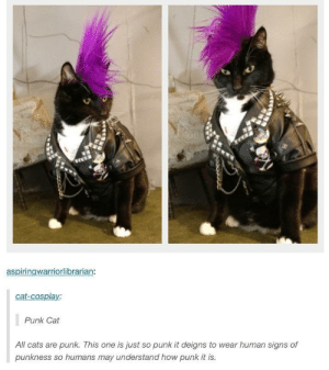 Cats, Cosplay, and How: aspiringwarriorlibrarian:  cat-cosplay:  Punk Cat  All cats are punk. This one is just so punk it deigns to wear human signs of  punkness so humans may understand how punk it is. Punks not dead. It has nine lives.
