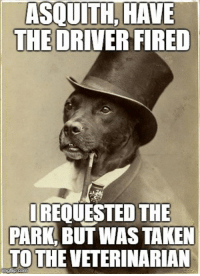 Old Money Dog does not tolerate dishonesty: ASQUITH, HAVE  THE DRIVER FIRED  REQUESTED THE  PARK,BUT WAS TAKEN  TO THE VETERINARIAN  imgip.com Old Money Dog does not tolerate dishonesty