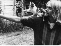 Ass, Memes, and Kurt Cobain: ASS Kurt Cobain would have been fifty years old today.