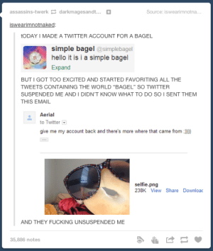 """Just a simple bagel: assassins-twerk darkmagesandt+  Source: iswearimnotna.  iswearimnotnaked:  tODAY I MADE A TWITTER ACCOUNT FOR A BAGEL  simple bagel @simplebagel  hello it is i a simple bagel  Expand  BUT I GOT TOO EXCITED AND STARTED FAVORITING ALL THE  TWEETS CONTAINING THE WORLD """"BAGEL"""" SO TWITTER  SUSPENDED ME AND I DIDN'T KNOW WHAT TO DO SO I SENT THEM  THIS EMAIL  Aerial  to Twitter  give me my account back and there's more where that came from))  selfie.png  238K View Share Downloac  AND THEY FUCKING UNSUSPENDED ME  35,886 notes Just a simple bagel"""