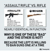 "BV: ""ASSAULT RIFLE""VS. RIFLE  ARMALITE  RUGER  AR-15  MINI-14  CALIBER: 223  VELOCITY 3.280 FT/S  CAPACITY:5-30  RATE OF FIRE: 45 RPM  CALIBER: 223  VELOCITY: 3.297 FT/S  CAPACITY: 5-30  RATE OF FIRE: 45 RPM  NEARLY IDENTICAL IN FUNCTION  WHYIS ONE OFTHESE ""BAD""  AND THE OTHER IS NOT?  BECAUSE THE LEFT IS WILLING  TO BAN GUNS ONE AT A TIME BV"