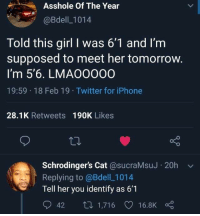 Dank, Iphone, and Twitter: Asshole Of The Year  @Bdell_1014  Told this girl I was 6'1 and I'm  supposed to meet her tomorrow  I'm 5'6. LMAOO000  19:59 18 Feb 19 Twitter for iPhone  28.1K Retweets 190K Likes  Schrodinger's Cat @sucraMsuJ 20h v  Replying to @Bdell_1014  eTell her you identify as 6'1  942  , 1,71 6V16.8Ko