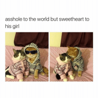 Girl Memes, Asshole, and The World: asshole to the world but sweetheart to  his girl badboii