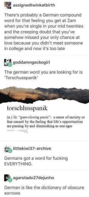 "Germans?: assignedtwinkatbirth  There's probably a German compound  word for that feeling you get at 2am  when you're single in your mid twenties  and the creeping doubt that you've  somehow missed your only chance at  ove because you didn't meet someone  in college and now it's too late  goddamngeckogirl  The german word you are looking for is  Torschusspanik'  torschlusspanik  (n.) lit. ""gate-closing panic"" a sense of anxiety or  fear caused by the feeling that life's opportunities  are passing by and diminishing as one ages  A  littlekiwi37-archive  Germans got a word for fucking  EVERYTHING.  agarotado27dejunho  German is like the dictionary of obscure  sorrows Germans?"