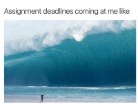 Tumblr, Http, and Com: Assignment deadlines coming at me like @studentlifeproblems