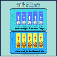 Association for  Pet obesity  Prevention  52.5%  52.6%  52.7%  53.8%  53.9%  45  t t t t t  30  15  MOM  2012 2013  2014  2015  2016  overweight & obese Dogs  57.6%  57.9%  58.2%  58.9%  58.3%  45  t t t t t  30  15  2012 2013  2014  2015  2016  overweight & obese Cats  Petobesity Prevention org More information from Association for Pet Obesity Prevention annual survey. Read the full report here: http://petobesityprevention.org/2016-u-s-pet-obesity-statistics/