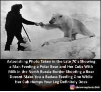 Astonishing: Astonishing Photo Taken in the Late 70's Showing  a Man Feeding a Polar Bear and Her Cubs With  Milk in the North Russia Border Shooting a Bear  Doesnt Make You a Badass Feeding One While  Her Cub Humps Your Leg Definitely Does  g @blowingfacts365