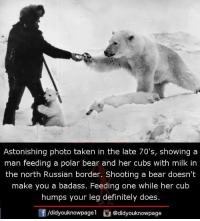 Astonishing: Astonishing photo taken in the late 70's, showing a  man feeding a polar bear and her cubs with milk in  the north Russian border. Shooting a bear doesn't  make you a badass. Feeding one while her cub  humps your leg definitely does.  /didyouknowpagel@didyouknowpage