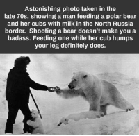 astonishment: Astonishing photo taken in the  late 70s, showing a man feeding a polar bear  and her cubs with milk in the North Russia  border. Shooting a bear doesn't make you a  badass. Feeding one while her cub humps  your leg definitely does.