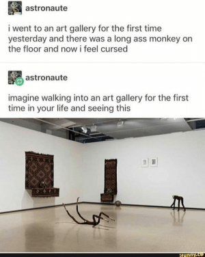 Ass, Life, and Monkey: astronaute  i went to an art gallery for the first time  yesterday and there was a long ass monkey on  the floor and now i feel cursed  astronaute  imagine walking into an art gallery for the first  time in your life and seeing this  ifunny.co