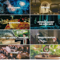 When ig deletes a bunch of accounts and you lose 265k :- I'm actually really proud of this edit? I spent a long time on it. Which class would you most want to take? Potions or charms for me!: ASTRONOMY  DEFENSE AGAINST  THE DARK ARTS  DIVINATION  CARE OF MAGICAL CREATURES  TRANSFIGURATION  @SLUGHORNS眺  CHARMS  HERBOLOGY When ig deletes a bunch of accounts and you lose 265k :- I'm actually really proud of this edit? I spent a long time on it. Which class would you most want to take? Potions or charms for me!