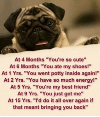"""Best Friend, Cute, and Energy: At 4 Months """"You're so cute""""  At 6 Months """"You ate my shoes!""""  At 1 Yrs. """"You went potty inside again!""""  At 2 Yrs. """"You have so much energy!  At 5 Yrs. """"You're my best friend""""  At 9 Yrs. """"You just get me''  At 15 Yrs. """"I'd do it all over again if  that meant bringing you back"""" <3 :'("""