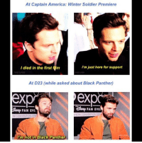 Little shit. sebastianstan: At Captain America: Winter Soldier Premiere  I died in the first film  I'm just here for support  hridi tumb  At D23 (while asked about Black Panther)  ex  op FAN EVE  FAN EVL  M CONVENTION CEN  HEIM CONVENTION CEN  i'm not in Black Panther Little shit. sebastianstan