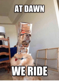 Memes, Dawn, and 🤖: AT DAWN  WE RIDE For glory!