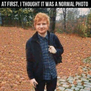 Thought, Closer, and Photo: AT FIRST, I THOUGHT IT WAS A NORMAL PHOTO Closer you must look