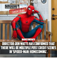 Hype, Memes, and Spider: At Homecoming  The Moon and Back  QUEEN KING  MARVETRUEFACTS  DIRECTOR JON WATTSHASCONFIRMED THAT  THERE WILLBEMUTIPLE POSTCREDITSCENES  IN SPIDER-MAN: HOMECOMING. HYPE! 🔥 I hope this becomes a reoccurring thing in the MCU! I loved all the scenes in GOTG Vol. 2 👏🏻